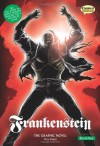 Frankenstein: Quick Text: The Graphic Novel (British English) - Jason Cobley, Mary Shelley, Jenny Placentino, Clive Bryant, Declan Shalvey, Terry Wiley, Jon Haward, Jason Cardy, Kat Nicholson, Jo Wheeler