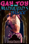 Gay Toy in the Maharajah's Palace - C.M. Knox