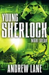 Night Break (Young Sherlock Holmes Book 8) - Andrew Lane