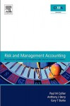 Risk and Management Accounting: Best Practice Guidelines for Enterprise-Wide Internal Control Procedures - Paul Collier, Aidan Berry