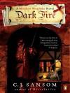 Dark Fire (Matthew Shardlake #2) - C.J. Sansom