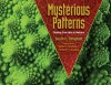 Mysterious Patterns: Finding Fractals in Nature - Sarah C Campbell, Richard P Campbell