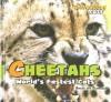Cheetahs: World's Fastest Cats - Amelie Von Zumbusch