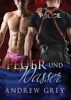 Feuer und Wasser (Carlisle Cops 1) (German Edition) - Andrew Grey, Jutta Grobleben