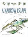 A Narrow Escape - Jessica Scott Kerrin