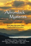 Adirondack Mysteries: And Other Mountain Tales - Dennis Webster, John H. Briant, Angela Zeman, Tico Brown, Cheryl Ann Costa, S.W. Hubbard, Paul Nandzik, David J. Pitkin, W.K. Pomeroy, Gigi Vernon
