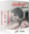 Shaken Series Box Set: Shattered & Shaken, All for Allie, Shattered & Mended - Julie Bailes, Becky Hot Tree Editing