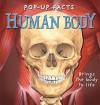 Pop Up Facts: Human Body (Pop Up Facts) - Emily Hawkins, Sue Harris, Andy Masnfield, Kim Thompson, Steve Kingston, Ross Francis, Rachael Pery-Johnston