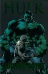 The Incredible Hulk, Vol. 2: Boiling Point - Bruce Jones, John Romita Jr.