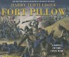 Fort Pillow: A Novel of the Civil War - Harry Turtledove, John Allen Nelson