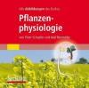 Alle Grafiken Des Lehrbuchs Pflanzenphysiologie - Peter Schopfer, Axel Brennicke