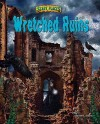 Wretched Ruins - Steven L. Stern, Paul F. Johnston
