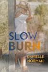 Slow Burn - Danielle Norman