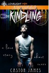 Kindling: A Love Story About Scars (The Fire Before Us Book 1) - Castor James