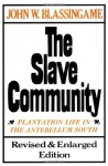 The Slave Community: Plantation Life in the Antebellum South - John W. Blassingame