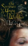 The Sorrows of Young Werther - Johann Wolfgang von Goethe, Michael Hulse