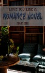 Love You Like a Romance Novel - Megan Derr