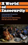 A World of Insecurity: Anthropological Perspectives of Human Security - Thomas Hylland Eriksen, Ellen Bal, Oscar Salemink