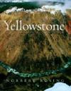Yellowstone - Norbert Rosing