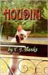 Houdini - T.J. Banks