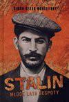 Stalin Młode lata despoty - Montefiore Simon Sebag, Antosiewicz Maciej