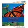 Bella the Butterfly - Barbie Shannon