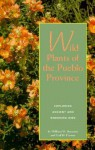 Wild Plants of the Pueblo Province: Exploring Ancient and Enduring Uses - William W. Dunmire