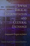 Jewish Biblical Interpretation and Cultural Exchange: Comparative Exegesis in Context - Natalie B Dohrmann, David Stern