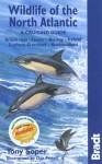 Wildlife of the North Atlantic: A Cruising Guide - Tony Soper, Dan Powell