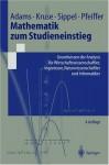 Mathematik Zum Studieneinstieg: Grundwissen Der Analysis Fa1/4r Wirtschaftswissenschaftler, Ingenieure, Naturwissenschaftler Und Informatiker - Gabriele Adams
