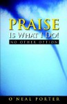 Praise Is What I Do - No Other Option - O'neal Porter