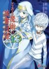 とある魔術の禁書目録 13 - Kazuma Kamachi, Haimura Kiyotaka
