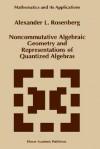 Noncommutative Algebraic Geometry and Representations of Quantized Algebras - A. Rosenberg