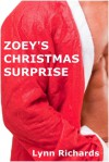 Zoey's Christmas Surprise - Lynn Richards