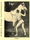 Classical Male Nudes - Janssen Verlag, Volker Kanssen, Volker Ianssen