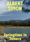 Springtime in Sonora (Henry Wright Mystery #2) - Albert Simon