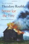 Straw for the Fire: From the Notebooks of Theodore Roethke - Theodore Roethke, David Wagoner
