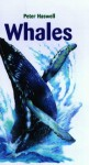 Whales - Peter Haswell