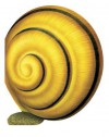 Snail - Giovanni Caviezel