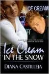 Ice Cream In The Snow - Diana Castilleja