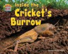 Inside the Cricket's Burrow - Dawn Bluemel Oldfield