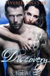 Discovery - S.K. Falls