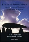 Places of Special Virtue: Megaliths in the Neolithic Landscapes of Wales - Vicki Cummings