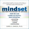 Mindset: The New Psychology of Success (Audiobook) - Carol S. Dweck