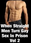 When Straight Men Turn Gay - Sex In Prison Vol 2 The Ex-Cop's Sexual Torment Continues - Ryan Scott
