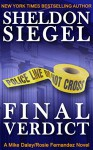 Final Verdict (Mike Daley/Rosie Fernandez Legal Thriller Book 4) - Sheldon Siegel