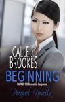 Beginning: A PAVAD Prequel Novella (PAVAD: FBI Romantic Suspense) - Calle J. Brookes
