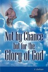 Not by Chance But for the Glory of God - J. Jackson