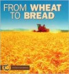 From Wheat to Bread - Stacy Taus-Bolstad