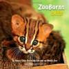 ZooBorns Cats! - Andrew Bleiman, Chris Eastland